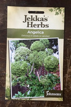 Load image into Gallery viewer, ANGELICA  Jekka's Herbs