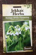 Load image into Gallery viewer, BORAGE White Flowering  Jekka's Herbs