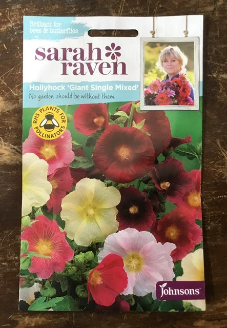 Hollyhock 'Giant Single Mixed' - Sarah Ravens Flower Seeds
