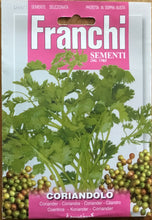 Load image into Gallery viewer, Franchi Coriander