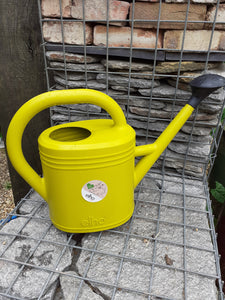 green basics watering can 10ltr