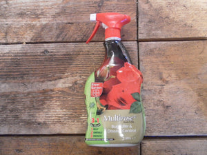 Multirose Bug Killer & Disease Control 1L
