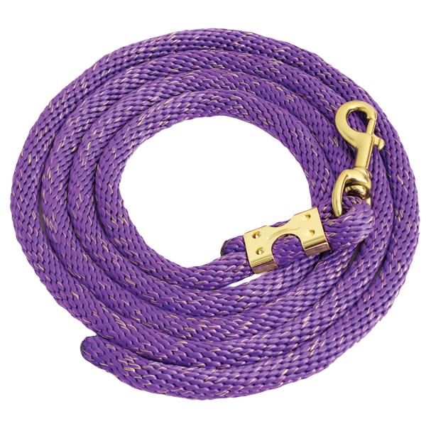 Purple Gold Glitter Rope Leads