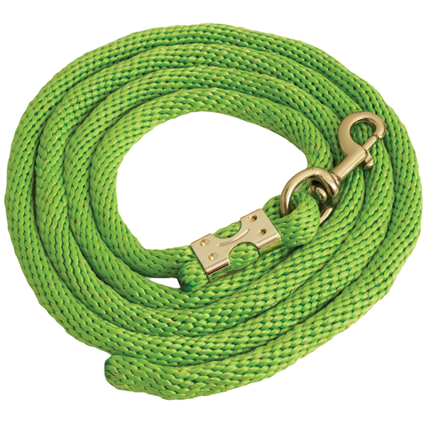 Lime Gold Glitter Rope Leads