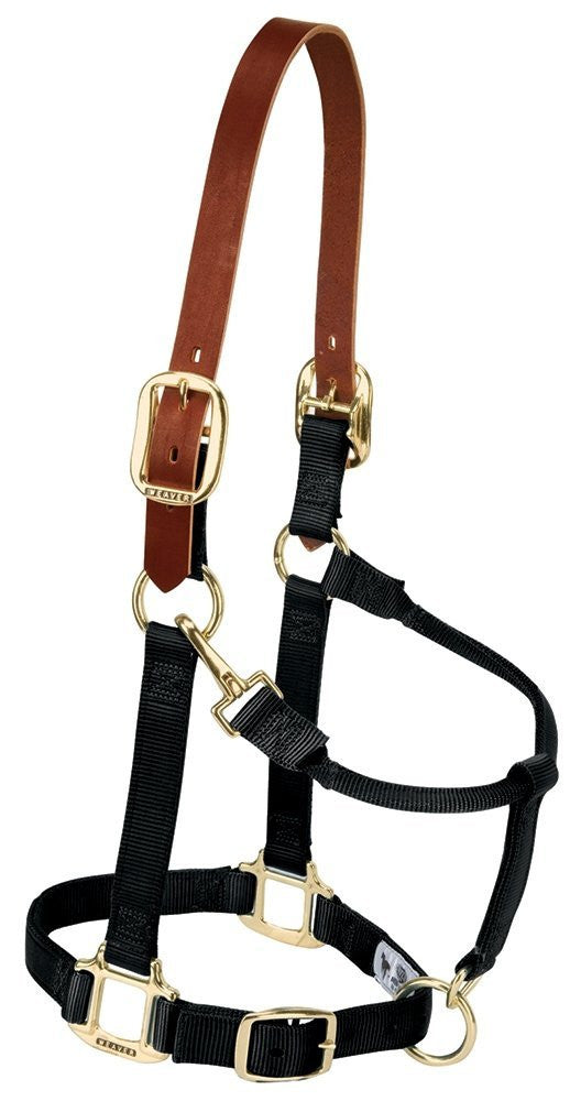 Weaver Leather Breakaway Original Adjustable Chin and Throat Snap Halter - Kerlin's Western and Work Wear  - 1