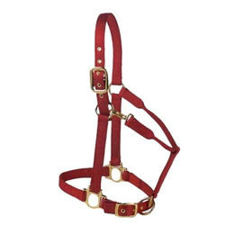 Premium Halter - Pony - Kerlin's Western and Work Wear  - 1