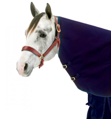 English Riding Supply Centaur® 1200D Neck Cover - Kerlin's Western and Work Wear