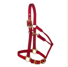Valhoma Premium Halter w/ Adj Chin and Throat Snap - Small Horse - Kerlin's Western and Work Wear
