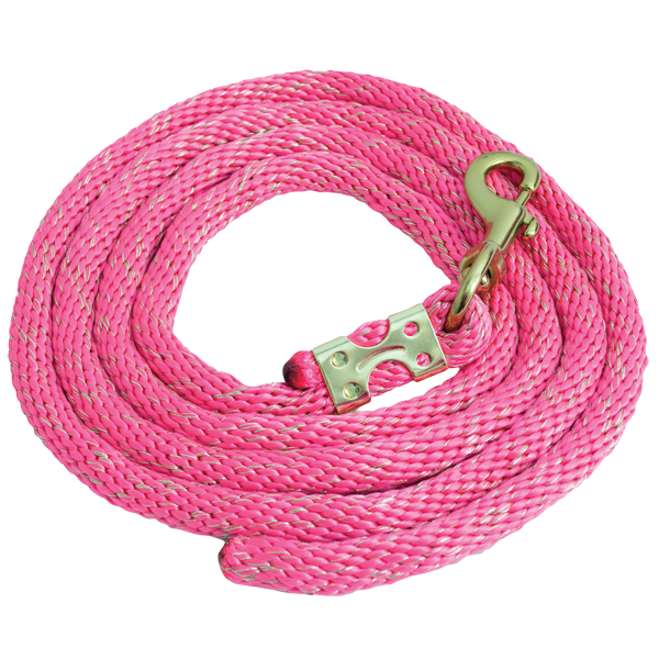 Pink Gold Glitter Rope Leads