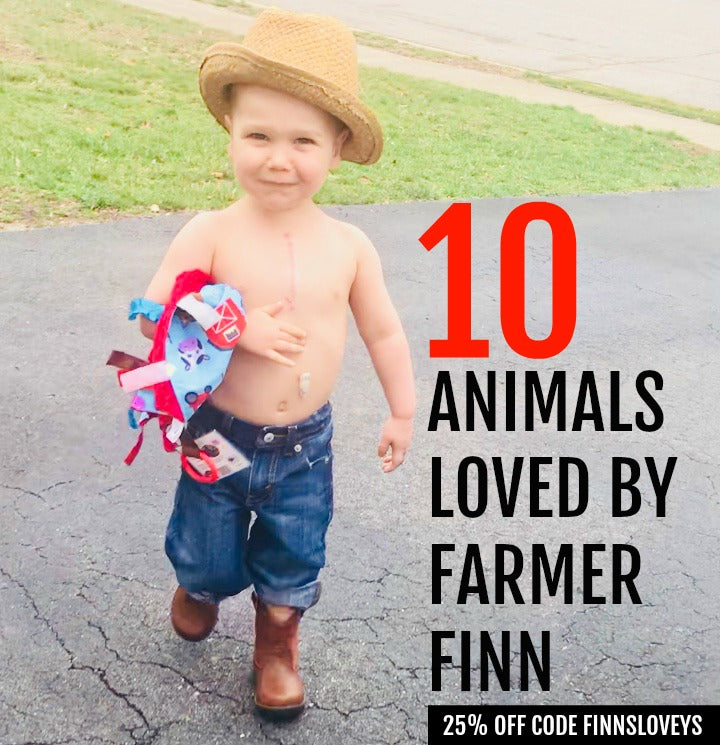Ten Favorites From Farmer Finn