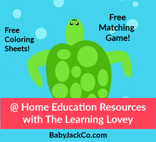 At Home Learning with The Learning Lovey by Baby Jack