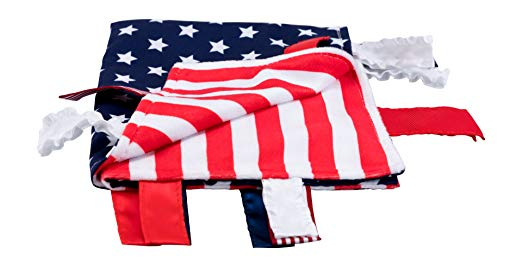 U.S. American Flag Learning Lovey Collection