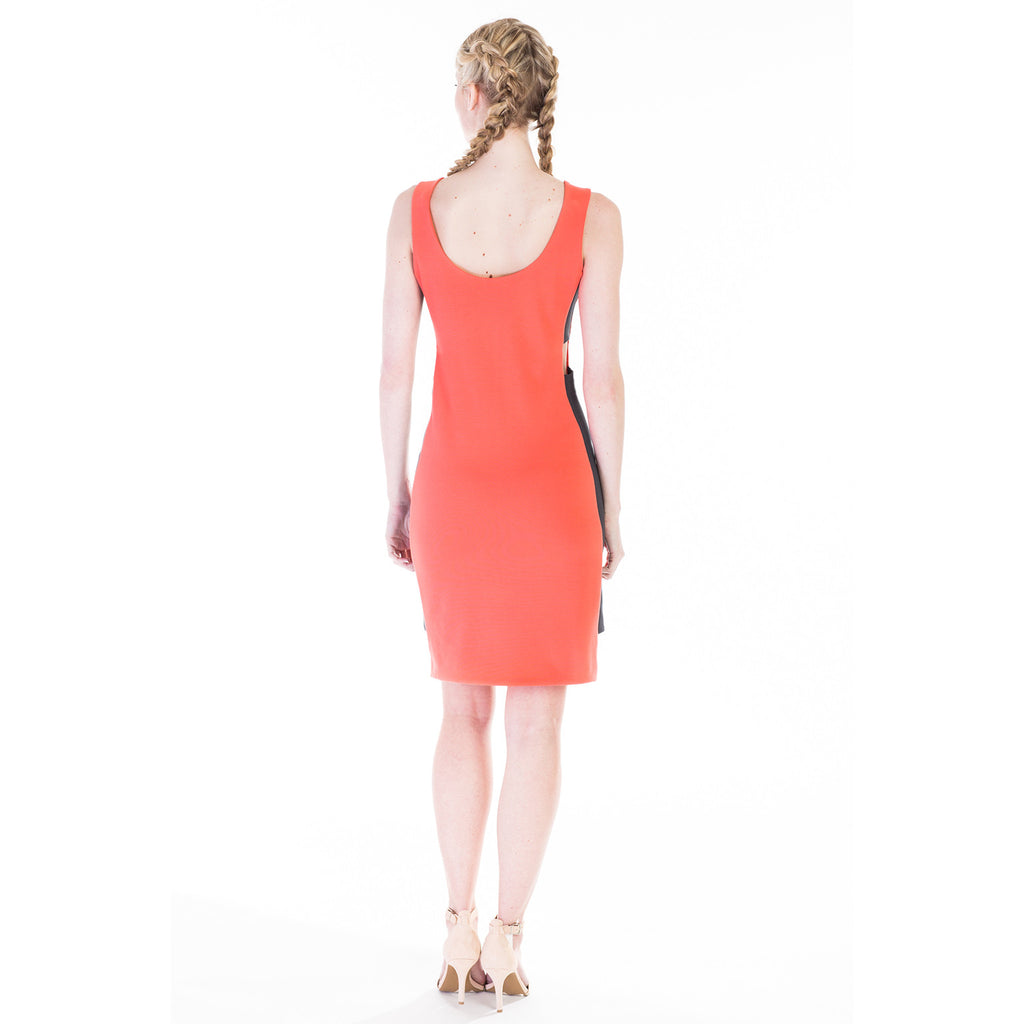 claribel dress pink back
