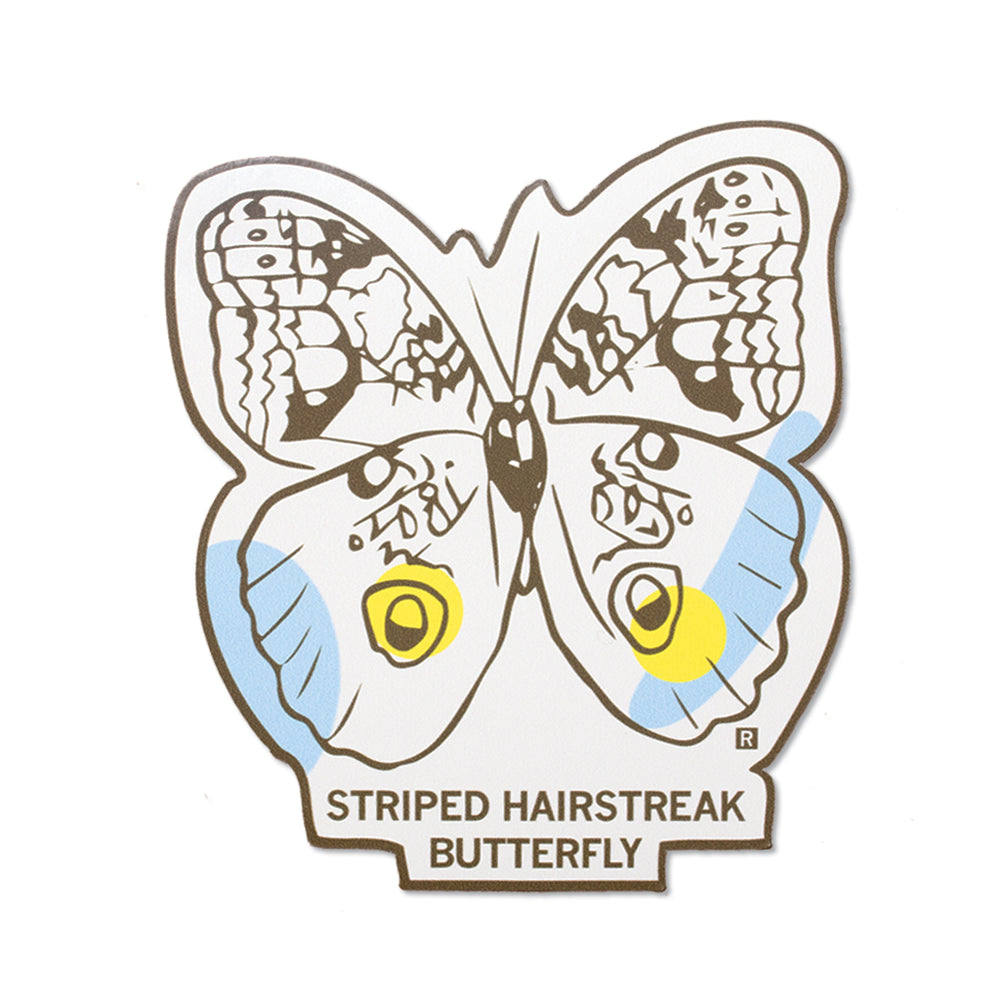 Striped Hairstreak Butterfly Midwestern Pollinators Sticker