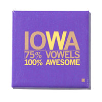 Iowa Vowels Metal Magnet - Purple
