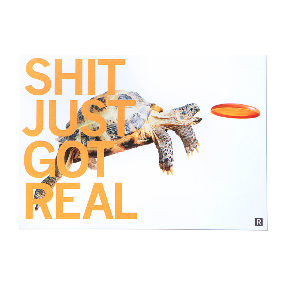 Shit Just Got Real Turtle Postcard