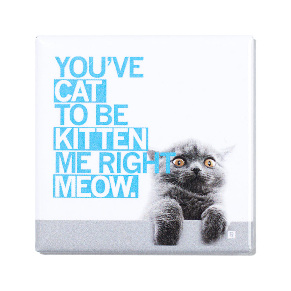 Cat To Be Kitten Me Photo Metal Magnet