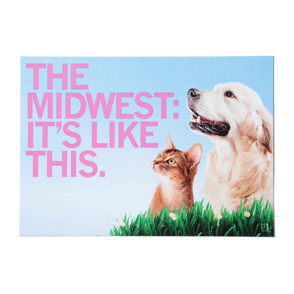 The Midwest It's Like This Cat Dog Photo Postcard