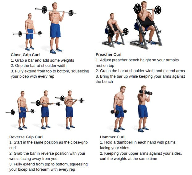 Bicep and Tricep Workouts