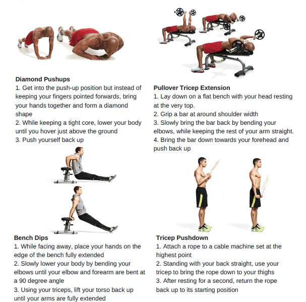 Weightlifting For Beginners - Triceps
