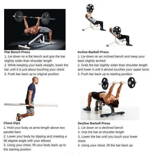 Weightlifting For Beginners - Chest