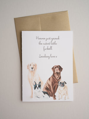 SYM-20-01 | Furball - Greeting Cards - Queen & Grace