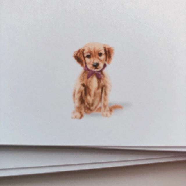 Puppy - Panel Cards