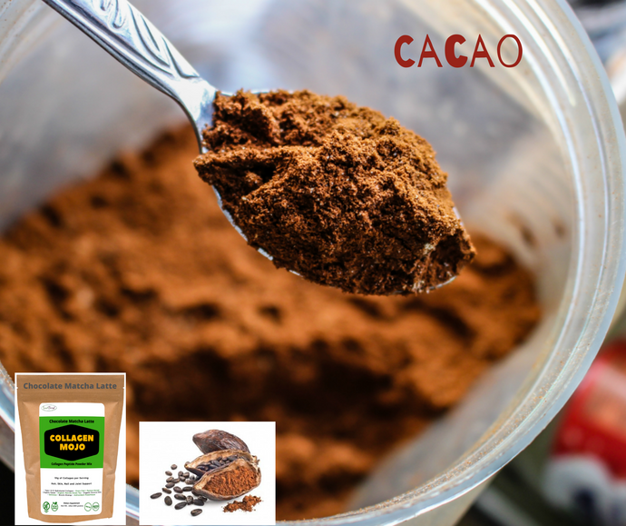 Cacao and Magnesium | Collagen MOJO