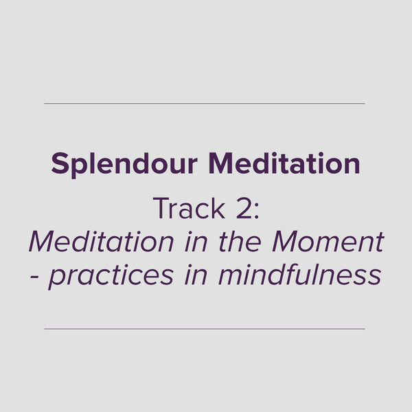 0302 Meditation in the moment - practices in mindfulness