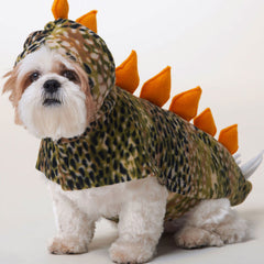 Costume Patterns for Pets