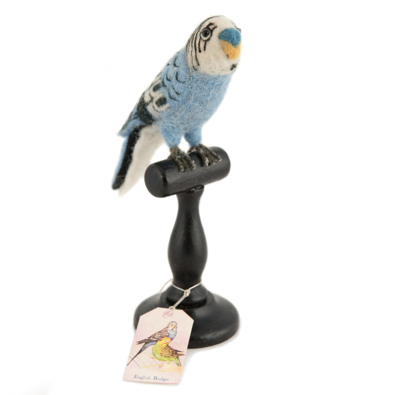 Mounted Blue Budgie