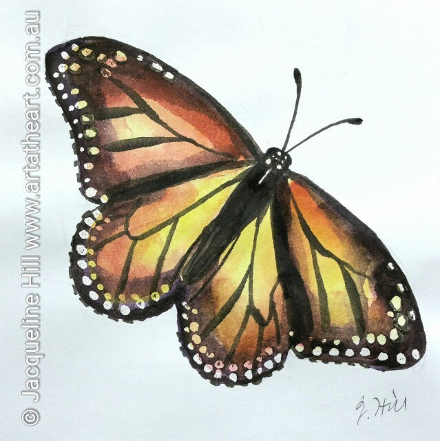 "DA017 ""Monarch (Butterfly)"" Original Watercolour Painting apx 6x6"" / 15cm sq by Jacqueline Hill"