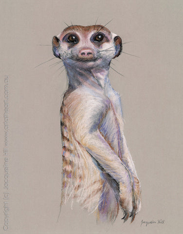 """Meerkat"" by Jacqueline Hill, Limited Edition Fine Art Reproduction"