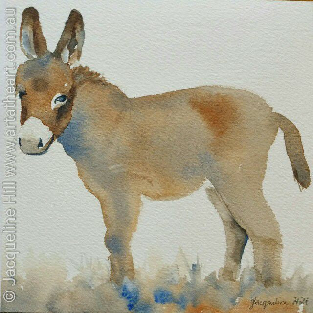 "DA072 ""Baby Donkey"" Original Watercolour Painting apx 6x6"" / 15cm sq by Jacqueline Hill"
