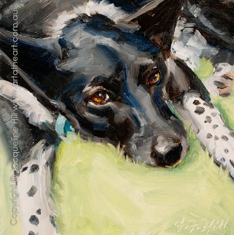 "DPE026 ""Maddie"" Original Oil on Panel Painting by Jacqueline Hill"