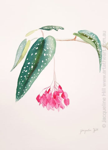 "DA338 ""Adornment"" (pink flowers) Original Watercolour Painting apx 10x14"" / 26x36cm by Jacqueline Hill"