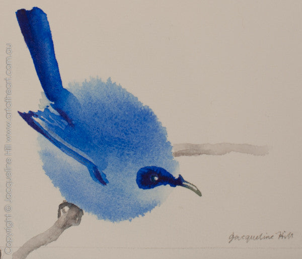 """Blue Wren Iw"" Original Watercolour Painting by Jacqueline Hill [OR316]"