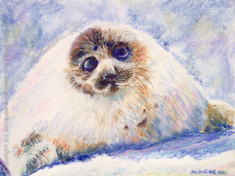 """Baby Harp Seal"" by Jacqueline Hill, Limited Edition Fine Art Reproduction"