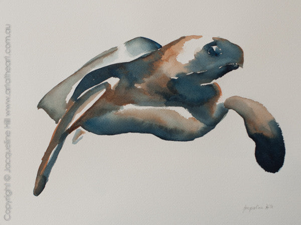 """Turtle XV"" Original Watercolour Painting by Jacqueline Hill [OR309]"