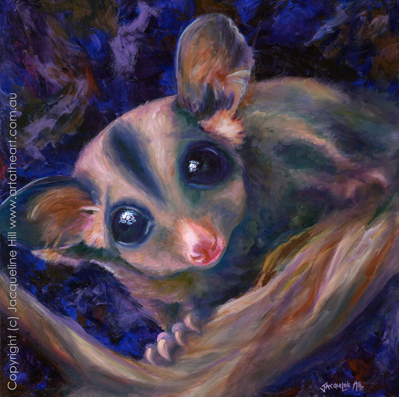"""Sugar Glider"" (acrylic) by Jacqueline Hill, Limited Edition Fine Art Reproduction"