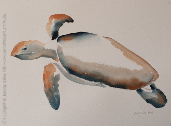 """Turtle XVI"" Original Watercolour Painting by Jacqueline Hill - Framed in White [OR310]"