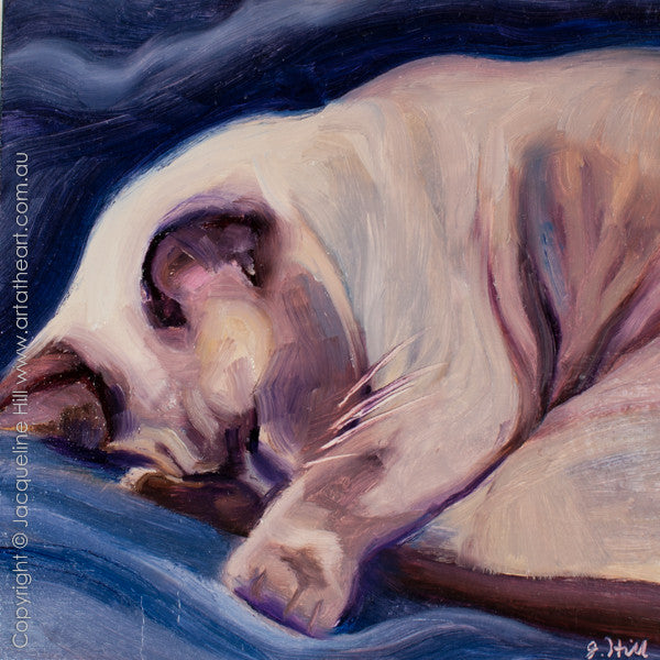 "DP250 ""Cosy Dreaming"" Original Oil on Panel Painting by Jacqueline Hill"