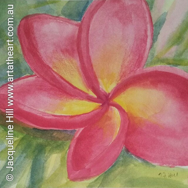 "DA007 ""Favourite Frangipani"" Original Watercolour Painting apx 6x6"" / 15cm sq by Jacqueline Hill"