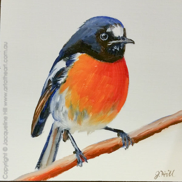 "DP315 ""Scarlet Robin"" Original Oil on Panel Painting by Jacqueline Hill"