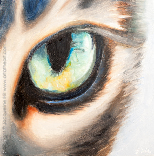 "DP205 ""Little Tiger Eye"" Original Oil on Panel Painting by Jacqueline Hill"