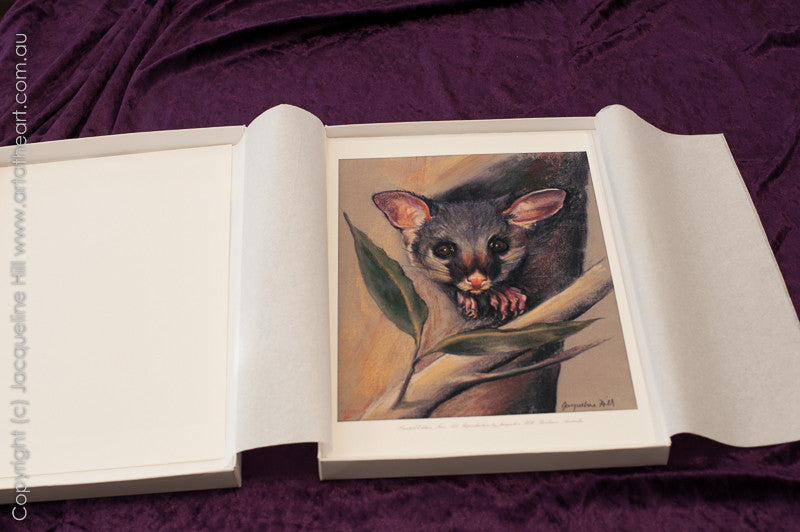 """Animals of Australia"" by Jacqueline Hill boxed set Limited Edition Fine Art Reproductions"