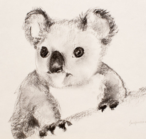 """Baby Koala Study II"" Original Charcoal Artwork by Jacqueline Hill"