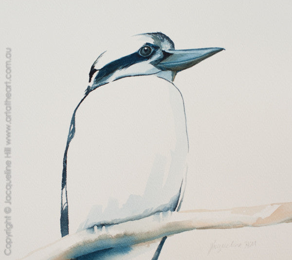 """Kookaburra VII"" Original Watercolour Painting by Jacqueline Hill [OR282]"