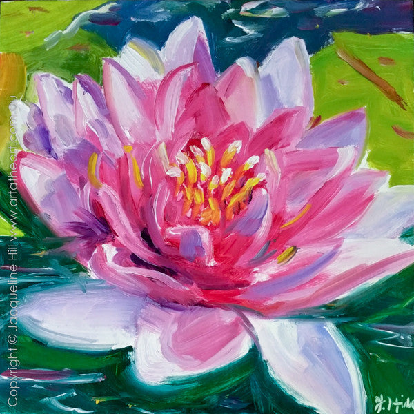 "DP318 ""Awakening"" (Waterlily) Original Oil on Panel Painting by Jacqueline Hill"