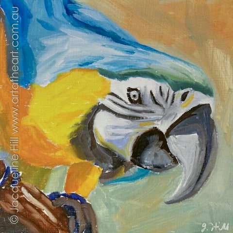 "DP343 ""Blue Macaw"" Original Oil on Panel Painting by Jacqueline Hill"